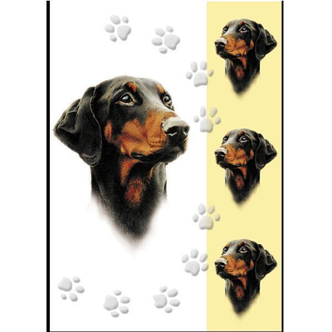 DOBERMAN GREETINGS CARD